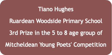 Tiano Hughes Ruardean Woodside Primary School 3rd Prize in the 5 to 8 age group of Mitcheldean Young Poets' Competition