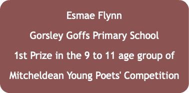 Esmae Flynn Gorsley Goffs Primary School 1st Prize in the 9 to 11 age group of Mitcheldean Young Poets' Competition